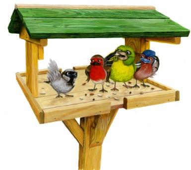 birdtable2